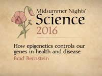 Как эпигенетика контролирует наши гены в здоровье и болезни
