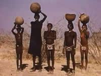 Документалка Ситуация с жёлтой лихорадкой в Южном Судане, 1954 г.