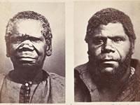 Тасманийцы